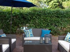 Editors' Picks: Outdoor Upholstery