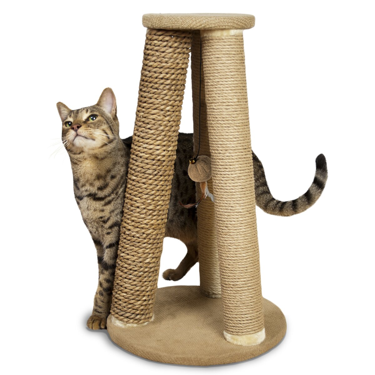 Hyacinth & Jute Pyramid Corner Scratch Post