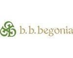 b.b.begonia