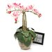 Nearly Natural Triple Mini Phalaenopsis Silk Orchid Flowers in Pink White