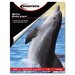 Innovera® Glossy Photo Paper, 50 Sheets/Pack