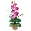 Nearly Natural Phalaenopsis Silk Orchid Flowers in Mauve with Vase