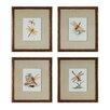 Sterling Industries Dragonflies 4 Piece Framed Graphic Art Set