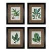 Sterling Industries Oak Leaves 4 Piece Framed Graphic Art Set