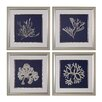 Sterling Industries Seaweed on Navy 4 Piece Framed Graphic Art Set