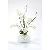 Distinctive Designs Waterlook® Phaleanopsis Orchids with Corkscrew Willow in Round Vase