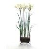 Distinctive Designs Waterlook Silk Nerine Lily Bulbs in Glass Vase