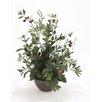 Distinctive Designs Silk Olive Tree in Bowl
