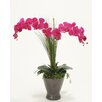 Distinctive Designs Violet Phalaenopsis Orchids in Stoneware
