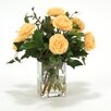 Distinctive Designs Waterlook Apricot Ranunculus with Ivy and Basil in Square Glass