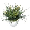 Fall Faux Grass Plant in Pot (Set of 4)