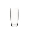 Luigi Bormioli Michelangelo Beverage Glass (Set of 4)