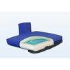 NYOrtho Apex Core Pommel Gel-Foam Cushion in Royal Blue