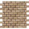 "Emser Tile Natural Stone 1"" x 2"" Travertine Subway Tile in Mocha"