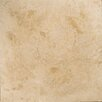 "Emser Tile 24"" x 24"" Travertine Pebble Tile in Beige"