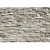 Brewster Home Fashions Ideal Decor Wall Mural