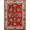 Home Dynamix Reaction Red & Cream Area Rug