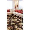 Wildon Home ® Cassiopeiah  Brown Area Rug