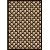 Wildon Home ® Casiana Brown/Beige Area Rug