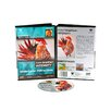 Weber Art Joanna Coke Watercolor Simplified Intensity 58 Minute DVD