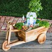 Evergreen Enterprises, Inc Mini Garden Novelty Wheelbarrow Planter
