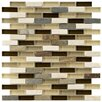 "EliteTile Sierra 0.5"" x 1.875"" Glass and Natural Stone Mosaic Tile in Nassau"