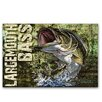 American Expedition Largemouth Bass Graphic Art on Canvas
