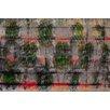 Parvez Taj Hidden Parrots Graphic Art on Premium Wrapped Canvas