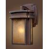 Elk Lighting Sedona 1 Light Wall Lantern