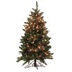 Vickerman Co. 4.5' Frosted Edina Slim Artificial Christmas Tree with Clear Lights