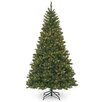 National Tree Co. 7.5' Green Pine Artificial Christmas Tree with 700 Incandescent Colored and Clear Lights with Stand