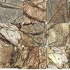 MS International Cafe Forest 4'' x 4'' Marble Field Tile in Brown