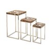 Woodland Imports Superior Beauty 3 Piece Nesting Tables