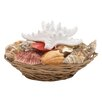 Woodland Imports Seashell Bowl