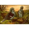 Buyenlarge 'Crowned Pigeons' by F.W. Kuhnert Painting Print