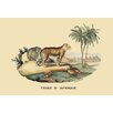 Buyenlarge Tigre d'Afrique (Tiger) by E. F. Noel Painting Print
