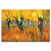 Buyenlarge 'Pollard Willows at Sunset' Painting Print on Wrapped Canvas
