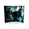 Trend Setters Harry Potter and the Deathly Hallows (Running in The Woods) Graphic Art Plaque