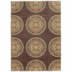 Tommy Bahama Home Tommy Bahama Cabana Brown / Multi Floral Rug