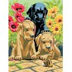 Royal & Langnickel Painting by Numbers Small Labrador Pups Junior Set (Set of 3)