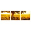 Artistic Bliss Prairie Photographic Print (Set of 3)