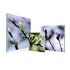 Artistic Bliss Flower Blossom Early Spring 3 Piece Framed Photographic Prints Set