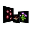 Artistic Bliss Fluorescent Flowers 3 Piece Framed Photographic Prints Set
