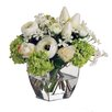 Jane Seymour Botanicals White and Chartreuse Bouquet in Square Glass Vase