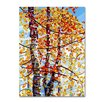 "Trademark Fine Art ""Panoply"" by Mandy Budan Graphic Art on Wrapped Canvas"