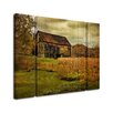 "Trademark Fine Art ""Old Barn on Rainy Day"" by Lois Bryan 3 Piece Painting Print on Wrapped Canvas Set"