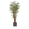Laura Ashley Home Harvest Bamboo Tree in Planter