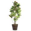 Laura Ashley Home Croton Tree in Planter