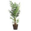 Laura Ashley Home Areca Palm Tree in Planter