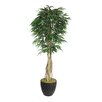 Laura Ashley Home Tall Willow Ficus Multiple Trunks Tree in Planter